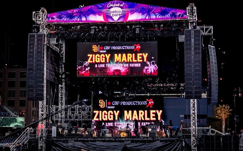Ziggy Marley - Rogue 3